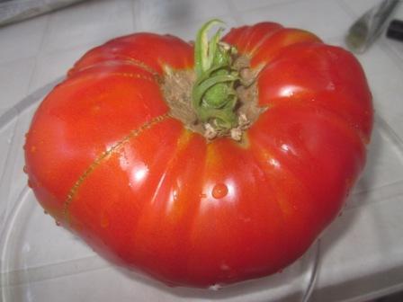 BIO-Pflanze Fleisch-Tomate Barmale Alte Tomatensorte