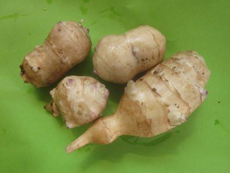 FL1 Topinambur gelb BIO Gemüsepflanze