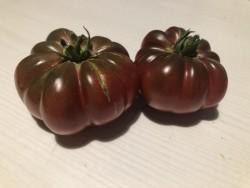 BIO-Pflanze Fleisch-Tomate Cherokee Purple Alte Tomatensorte
