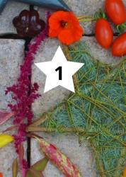Adventskalender Bunter Gemüsegarten
