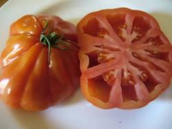 BIO-Samen Tomate Herz- Italienisches Ochsenherz